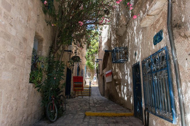 Jaffa, Tel Aviv / Oyster