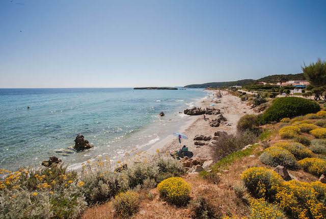 Santo Tomás, Menorca / Oyster