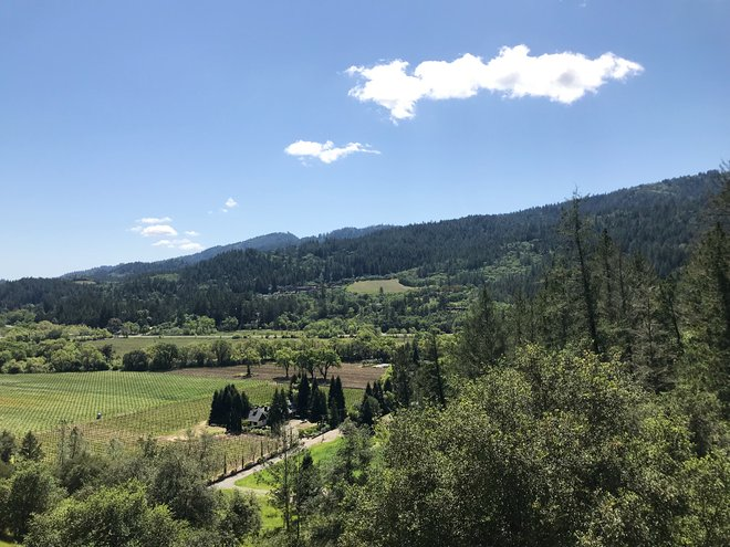 Vista da Sterling Vineyards; Lara Grant
