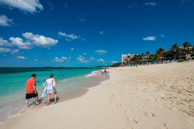 Paradise Island, Bahamas / Oyster