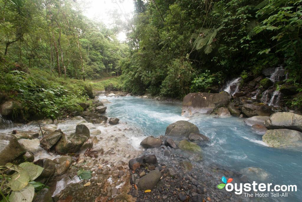 Blue River a  Blue River Resort & Hot Springs  /Ostrica