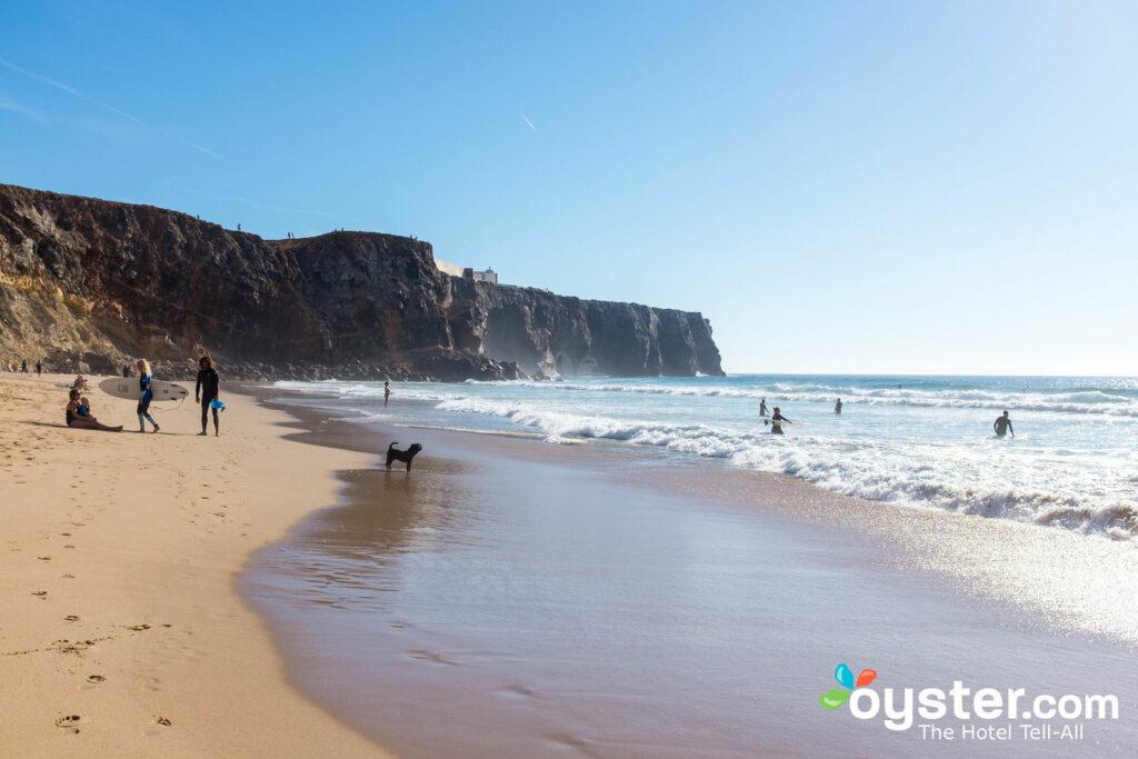 Surfisti su Praia do Tunel a Sagres / Oyster