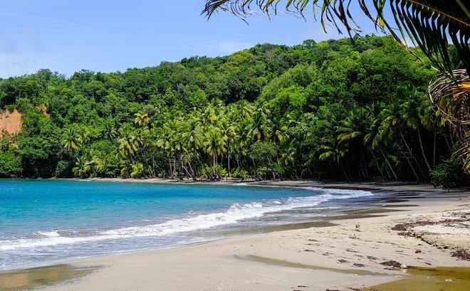 Batibou Beach, Dominica;  Matthias Ripp / Flickr