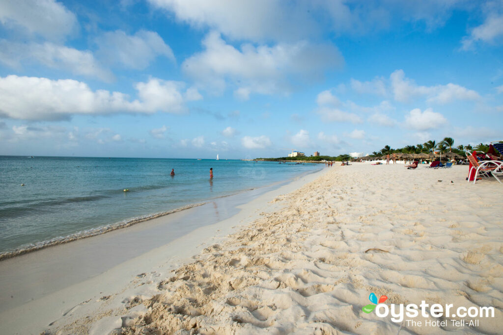 Playa en La Cabana Beach Resort & Casino / Oyster