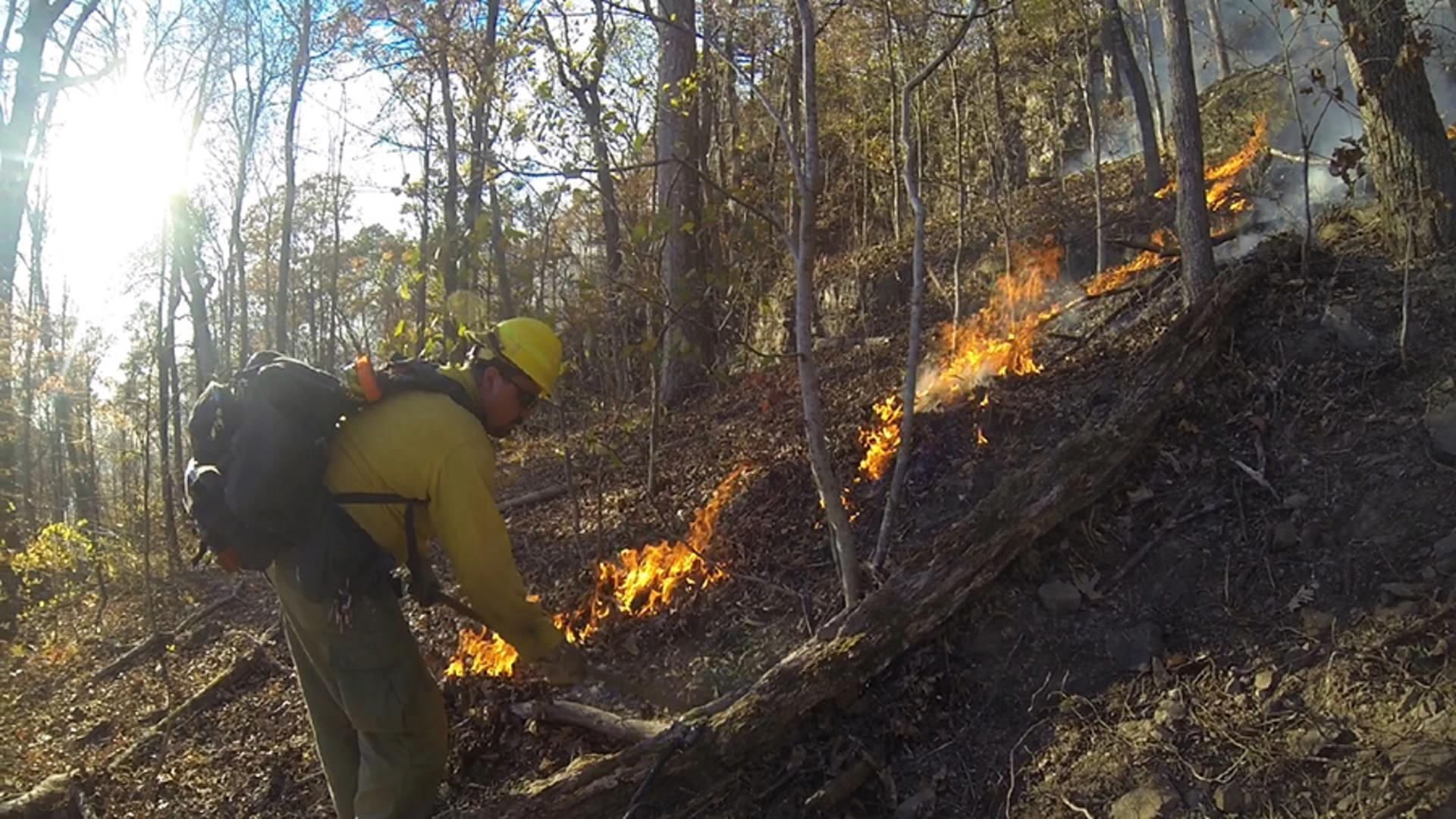 Hawksbill Crag Fire
