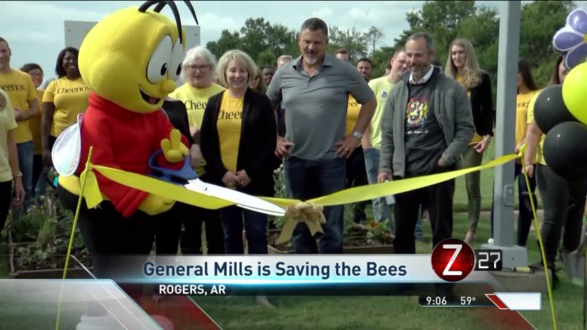 Save the Bees- Rogers Pollinator Garden Provides New Home_22682544