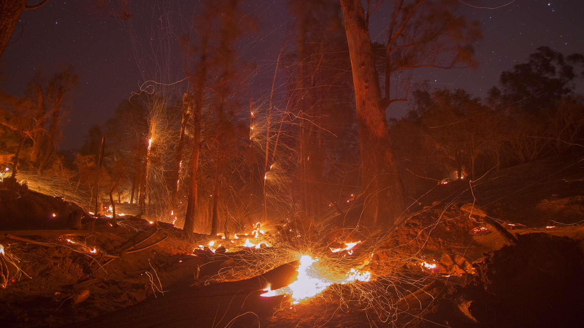 Thomas Fire, California wildfires, Montecito, wind blows embers from smoldering trees76406481-159532