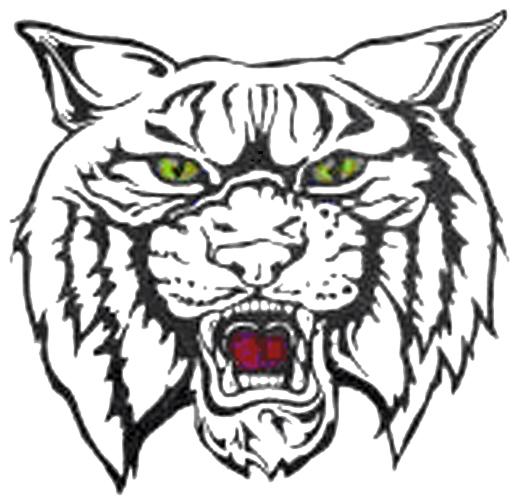 Rogersville Wildcats