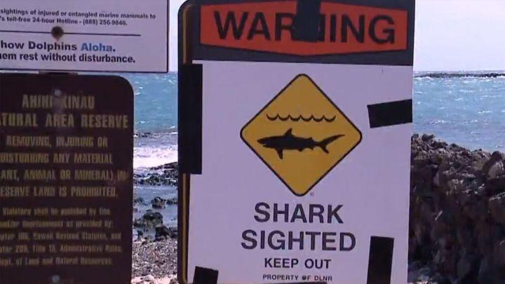 shark warning sign_1558879060839.jpg.jpg
