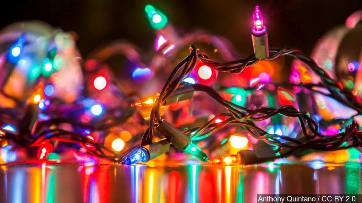 Christmas Lights In Nc 2019 NC man found wrapped in Christmas lights with dead cat in freezer