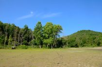 Piney Creek Wilderness - Camped at the mouth of Piney Creek and Buck Hollow