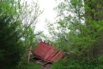 The old barn on the Sac River trail has collapsed - April 30, 2011