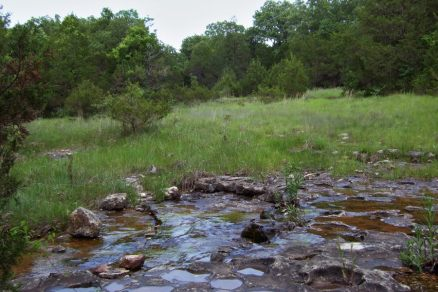 Glade and creek North of Upper Pilot Knob - Hercules Glades