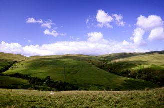 The hills to the North East of Dumyat, showing Pastures and derelict buildings