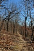 Busiek State Forest and Wildlife Area - White trail