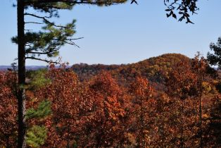 Fall color - Glade Top Trail (2009)