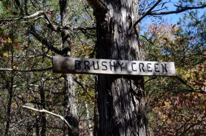 It must be Brushy Creek because the sign says so - though the map tends to disagree, and this is just one of many feeder creeks into Brushy Creek.