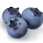 OZblu Blueberry Research