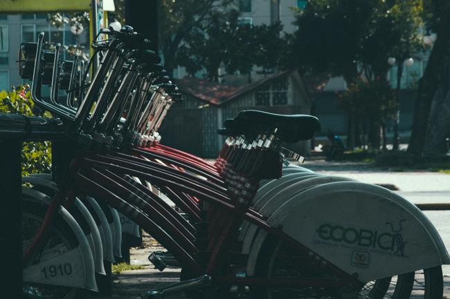 Eco Bici