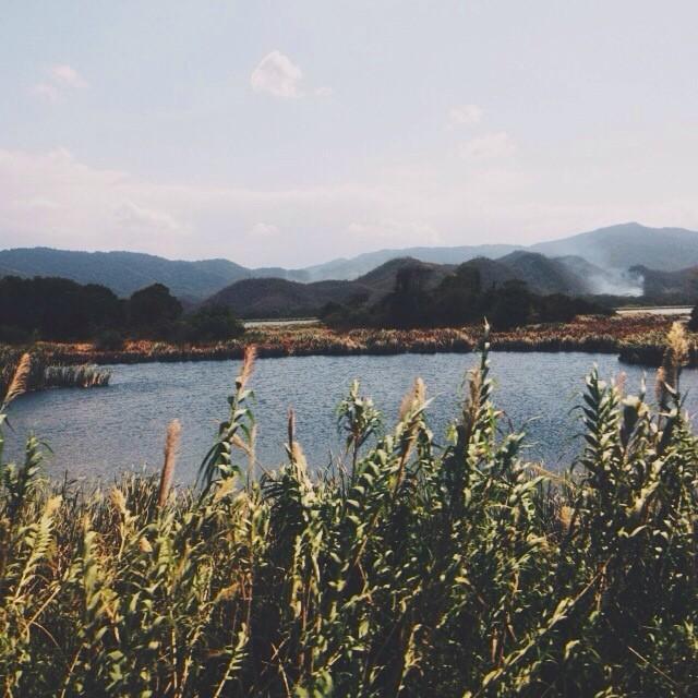 Represa Cumaripa