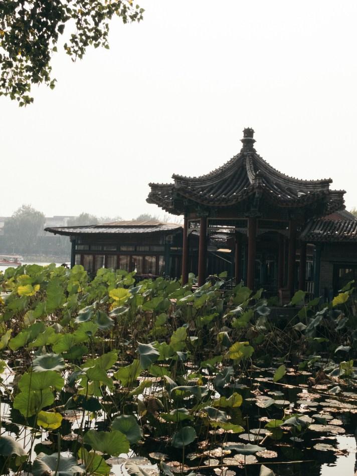 Qianhai Lake 前海