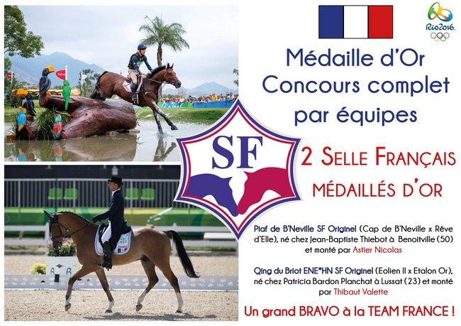 2 Chevaux Selle Français Médailles d'Or par équipes en CCE !