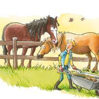 Nieuwe Paardenboeken Begin 2019 Tot Aan Zomer 2019 Paardenboekennl
