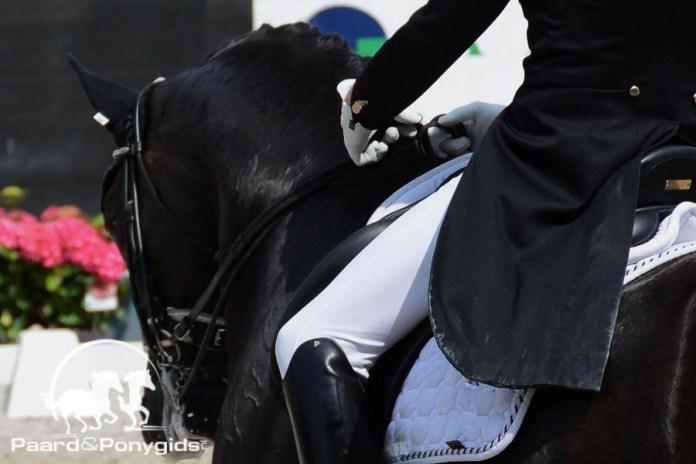 Hippiade: Paarden sluiten Hippiade weekenden af in Ermelo