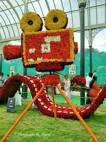 Lalbagh At Its Best – Flower Show, August 2018