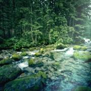 musica andina y naturaleza, relajación,