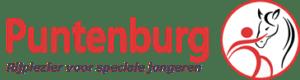 Puntenburg Logo