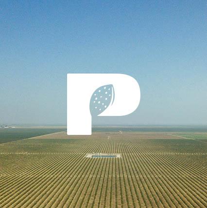 pacag_row2_4