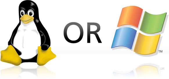 windows and linux server