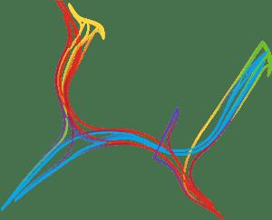 Auckland Nouvelle Zélande - Guillaume Sciaux - Cartographe professionnel