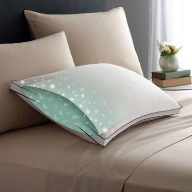 Pacific Coast Double DownAround Soft Pillow 300 Thread Count 550 Fill Power Down & Resilia Feathers - Standard