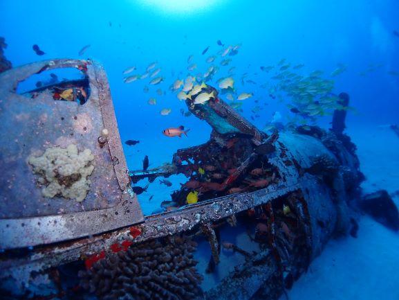 Corsair Wreck Diving - Oahu, Hawaii