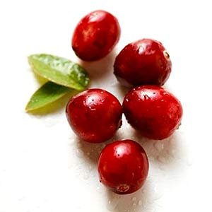 https://i1.wp.com/www.pacifichealth.info/images/cranberries.jpg