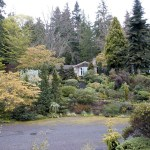 Pacific Horticulture Society Dry Slope Gardening In Seattle