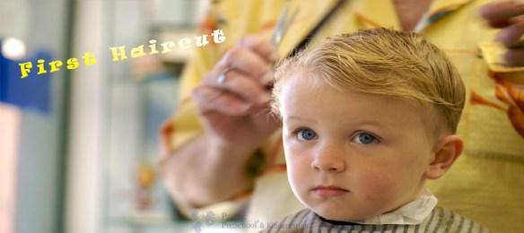 A boy having it's first haircut