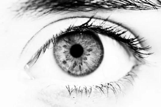 eye lash tinting