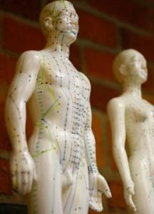 program diploma acupuncture
