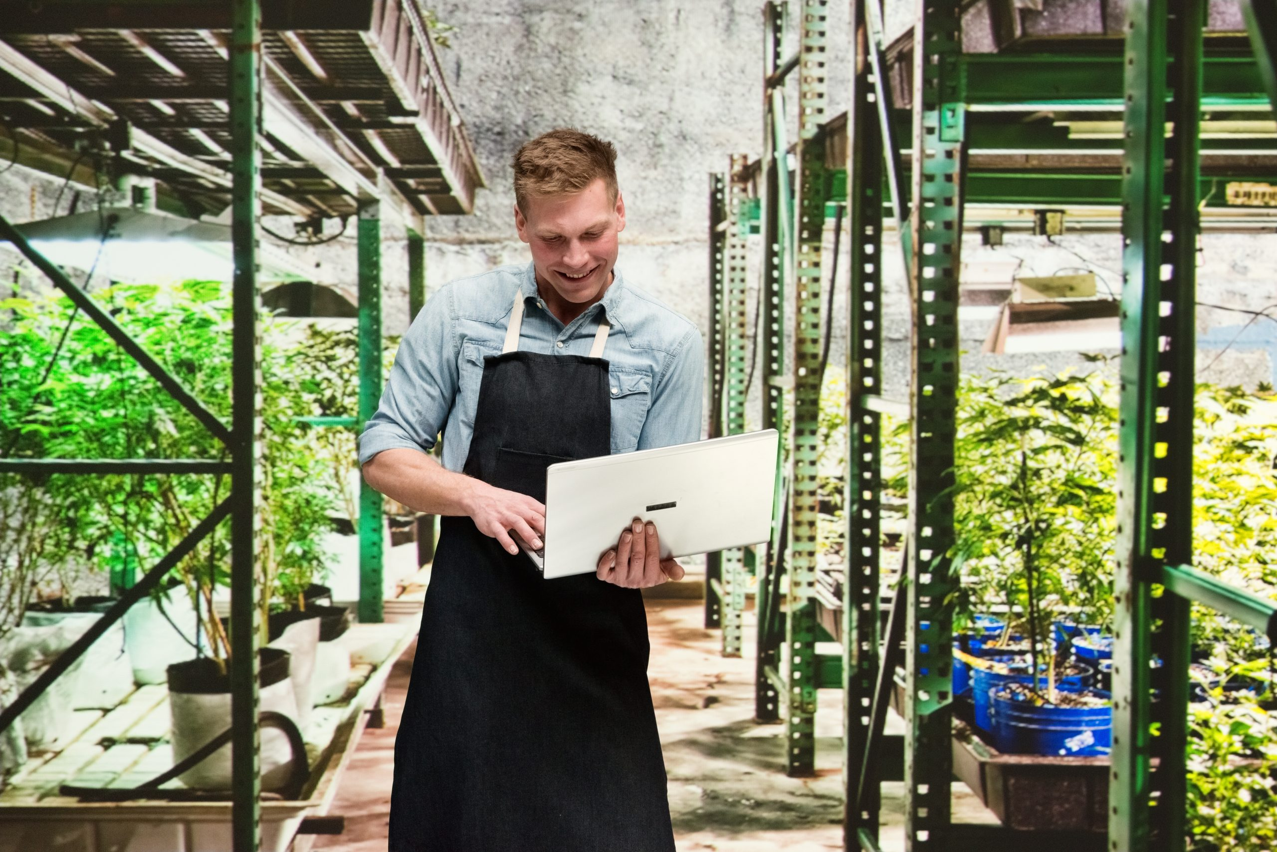 iStock 1170533154 scaled - Marijuana Trends To Pay Attention To In 2021