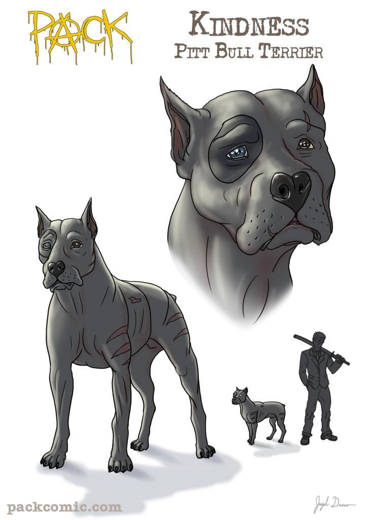Bio Pic of Kindness the Pitt Bull Terrier