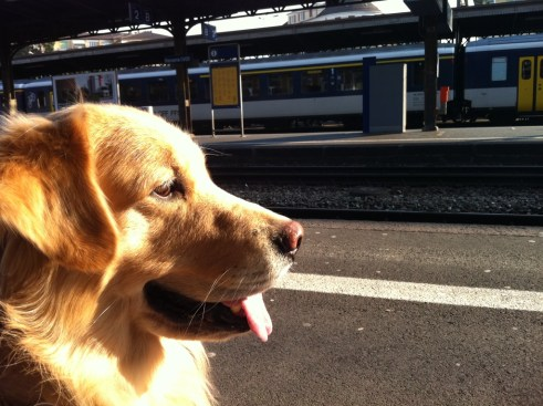 Waiting for the train in Geneva