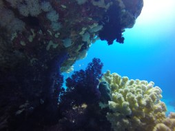 Diving in Marsa Alam, by Packing my Suitcase.