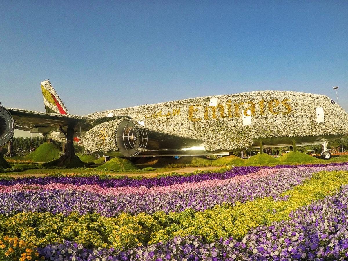 Dubai Miracle Gardens Flowers Emirates Plane | Instagram, Packs Light