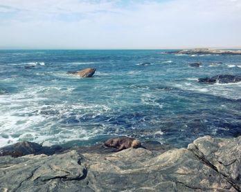 Namibia Landscapes   Packs Light