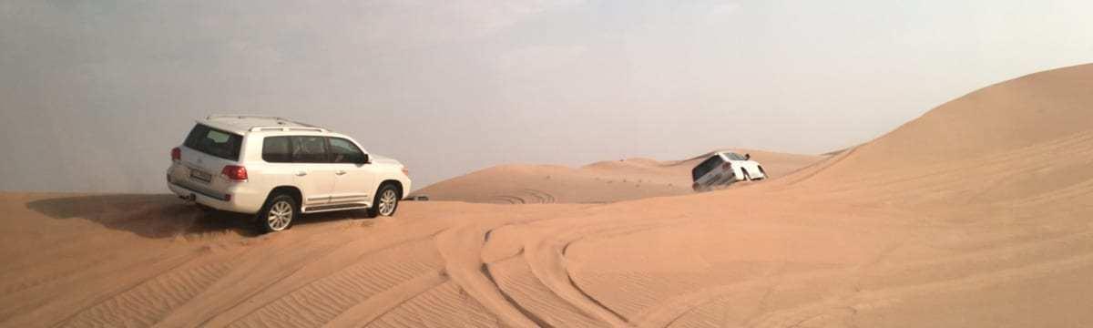 One Day in Abu Dhabi: Desert Safari Adventure with Desert Rose Tourism