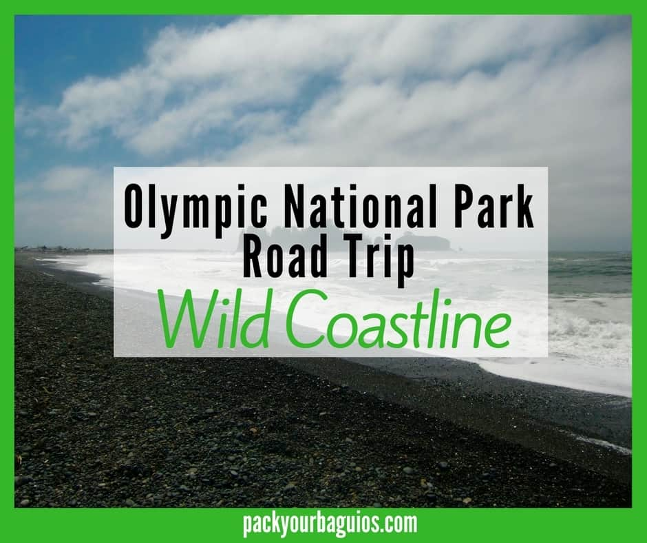 Olympic National Park Road Trip: Wild Coastline