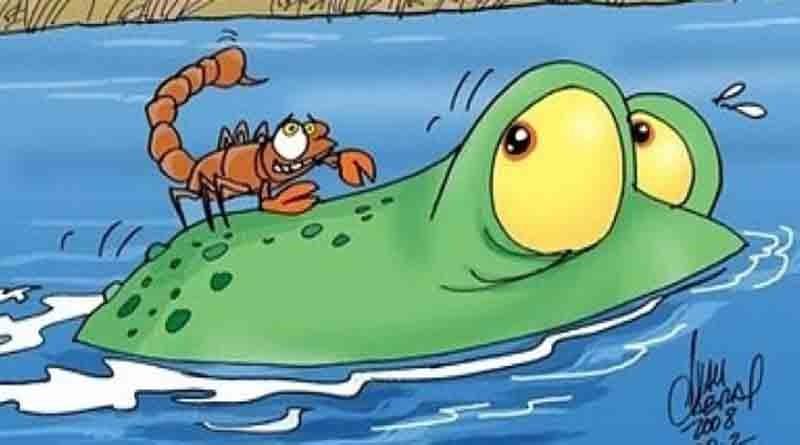 O sapo e o escorpião